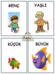 Slide3 - Kopya (2) Gross Motor Activities, Sensory Activities, Infant Activities, Activities For Kids, Free Preschool, Preschool Worksheets, Primary School, Pre School, Turkish Lessons