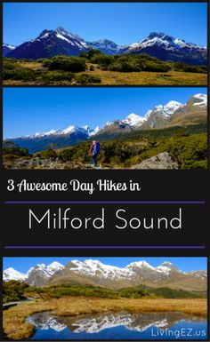Explore Fiordland National Park on foot with these lovely hikes!