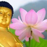 Buddha 15 csodája | Lótusz Amitabha Buddha, New Age Music, Relaxing Music, Hd 1080p, Buddhism, Youtube, Life, Calming Music, Youtubers