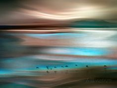Migrations Photographic Print by Ursula Abresch at AllPosters.com