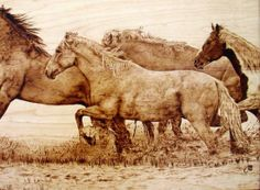 Julie Bender's pyrography - slow burning wood and coming up with this kind of detail is impressive to say the least