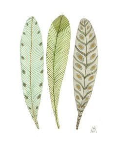 feathery plumes no. Garden Illustration, Painted Gourds, Feather Art, Black And White Illustration, Nature Crafts, Pretty Pictures, Flower Pots, Watercolor Art, Folk Art