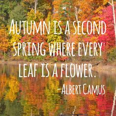 """""""Autumn is a send spring where every leaf is a flower."""" -Albert Camus"""