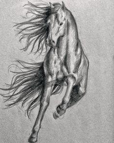 #Sketch of a #horse
