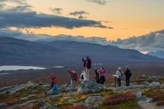 My post will show you what Lapland autumn is like: yellow colors at daytime, green auroras at night, reindeer and fells. See my autumn trip to Lapland. Trips To Lapland, Bye Bye, Finland, Reindeer, Aurora, Autumn, Mountains, Nature, Travel
