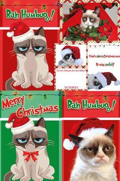 Bah grumpy cat