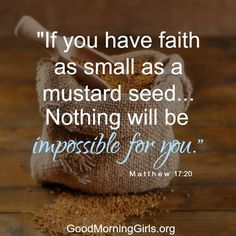 If you have faith as small as a mustard seed...nothing will be impossible for you. Matthew 17:20
