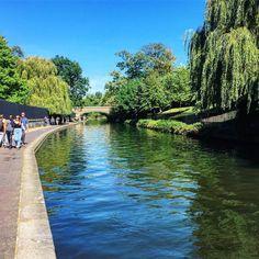 Sunday strolls along the canal  #weekend #thisislondon #canalwalks #regentspark #summer