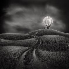 Fotograf Illuminate my Heart von Sherry Akrami auf 500px