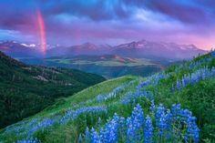 Telluride, Colorado. 2016 Photo by Ryan Bonneau.