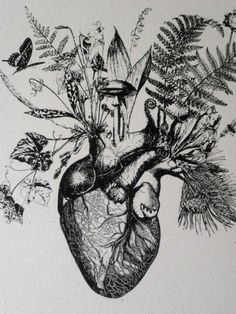anatomical heart tree - Google Search