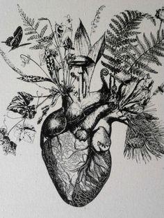 anatomical heart tree - Google Search