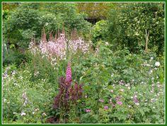 ein alter Bauerngarten von Dieter Dinger