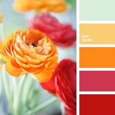 Possible palette for yoga room. Resource that helps you in color selection, specially created with this aim; it is the generator of inspiration. Colour Pallette, Colour Schemes, Color Combos, Orange Palette, Best Color Combinations, Orange Color Palettes, Spring Color Palette, Pantone, Summer Wedding Colors