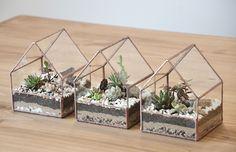 Garden Terrarium, Succulent Terrarium, Glass Boxes, Glass Containers, Geometric Box, Cement Flower Pots, Cactus Gifts, Greenhouse Interiors, Paludarium