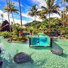 Laucala Island Resort, Laucala Island, Fiji, in the Melanesia region of the Pacific Ocean. This privately owned island is located east of Taveuni Island. https://www.google.ca/maps/place/Laucala+Island+Resort/@-16.8313325,-179.9911334,11z/data=!4m5!3m4!1s0x71e06d49ac18fbb9:0x199bdec67f2d7bb9!8m2!3d-16.74433!4d-179.69364