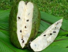 Graviola also known as bullocks heart, custard apple or soursop fruit Funny Fruit, Colombian Food, Green Fruit, Cuban Recipes, Tropical Fruits, Delicious Fruit, Eating Raw, Fruit Trees, Fruits And Vegetables