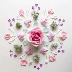 Lavender and rose flower mandala Arte Floral, Mandala Nature, Theme Nature, Photo Deco, Flower Backgrounds, Crystal Grid, Belle Photo, Flower Arrangements, Beautiful Flowers