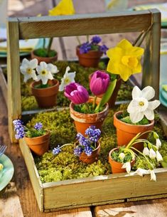 Moss + pots + spring flowers = beautiful display! More spring decorating; http://www.midwestliving.com/homes/seasonal-decorating/50-bright-and-easy-spring-decorating-ideas/?page=31