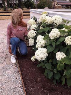 Bastilla, Garden Edging, Cabins In The Woods, Home Improvement Projects, Garden Inspiration, Exterior Design, Outdoor Gardens, Countryside, Lush
