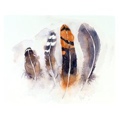 Bird Feather Art Original Watercolor Painting of Nature by LaBerge, $59.00