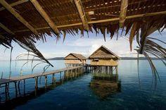 eco resort - Google Search