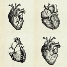 sketch heart tumblr - Buscar con Google