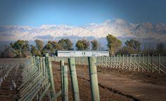 Bodega #Huarpe #Wines (Agrelo, #Mendoza)