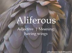 Aliferous adjective | Meaning: having wings.                                                                                                                                                                                 More