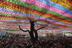 May 2014 - Seul, Corea del Sud Buddisti riuniti nel tempio di Jogye, a Seul, decorato da migliaia di lanterne per celebrare la nascita di Buddha, avvenuta 2.558 anni fa
