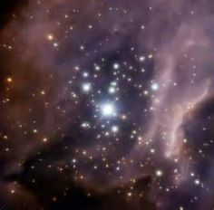 stellar cradles - yahoo Image Search Results