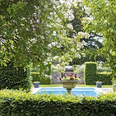 Romantic garden    A tranquil pool is surrounded by beech hedges that have been cut into pillars and archways to create an open feel, while classic urns are filled with eye-catching geraniums.    For geranium plants try  Crocus    Chosen by Homes & Gardens