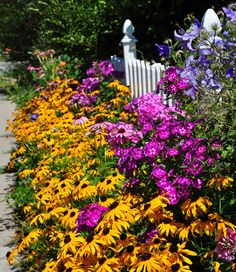 love the golden yellow + purple. could do this with black-eyed susans, coneflowers and asters.