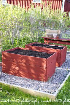 Raised beds - nice and high! Also wish for a seating lip around it so I can weed or whatever.