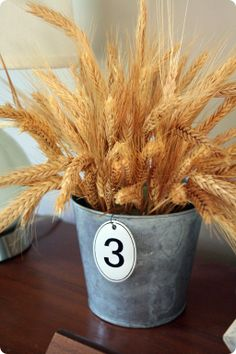 Planning a late summer or a fall wedding? I have a brilliant and budget-savvy ideas for you, and it's wheat! Wheat is adorable for rustic, countryside, vintage and just simple modern weddings. Wheat Centerpieces, Wheat Decorations, Bucket Centerpiece, Wedding Centerpieces, Wedding Decorations, Centerpiece Ideas, Wheat Wedding, Farm Wedding, Wedding Dinner