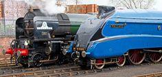 Mallard and Tornado Mallard, Steam Engine, Steam Locomotive, Trains, A4, Old Things, British, Train