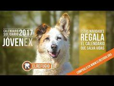 El Refugio presenta su calendario solidario JÓVENEX 2017