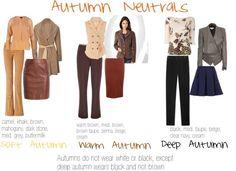 Autumn Neutrals