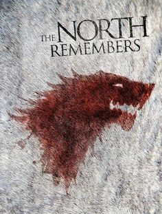 All hail the King of the North  | www.netflinda.com