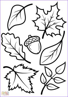 fensterbilder herbst vorlagen Fall Coloring Sheets Printable , Coloring Pages Fall Scenes Az Coloring Pages, Autumn Tree Coloring Page, Fall Leaves and Acorn Coloring Page Fall Coloring Sheets, Fall Leaves Coloring Pages, Leaf Coloring Page, Coloring Pages For Kids, Coloring Book, Kids Coloring, Free Coloring, Halloween Coloring Pages, Adult Coloring