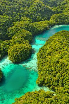 Turquoise colored water of the Milky Way Cove in Rock Islands / Palau (by Alexandros Dimitriou).