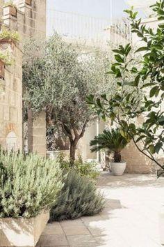 Modern Landscaping, Garden Landscaping, Landscaping Ideas, Florida Landscaping, Mediterranean Garden Design, Tuscan Garden, Provence Garden, Mediterranean Style, Design Jardin