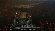 Happy Music Video, Music Videos, Music Aesthetic, Aesthetic Videos, Bobby Kpop, Ikon Songs, Korea Wallpaper, Wild Love, Korea Boy
