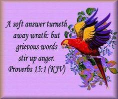 Proverbs 15:1 KJV