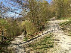 Parc Rivier Lausanne, Country Roads