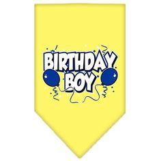 Birthday Boy Screen Print Dog Bandana