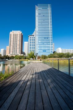 Discovery Green Conservancy: more than 60% of Ipe the wood used to construct the park came from sustainably-harvested forests. Ipe wood is a great choice because it's amazingly strong, dense and naturally resistant to rot, insects and fire.