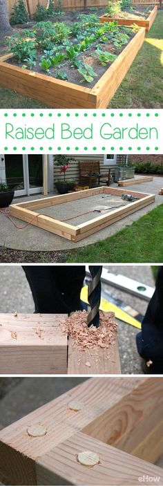 Building a raised garden bed is easier than you think. All it takes is a quick trip to the home improvement store, a few tools, a couple of hours, and you'll be ready to plant your very own garden. DIY instructions with pictures here: http://www.ehow.com/how_4776329_build-raised-bed-garden.html?utm_source=pinterest.com&utm_medium=referral&utm_content=freestyle&utm_campaign=fanpage