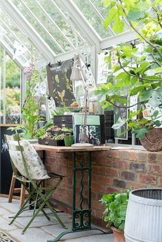 Greenhouse Interior Inspiration - Celebrating Entomology