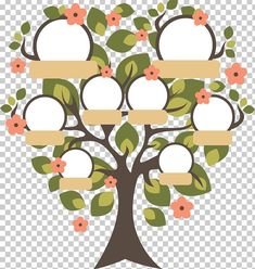Family Tree Images, Family Tree For Kids, Family Tree Art, Free Family Tree, Family Family, Gold Wallpaper Background, Blue Background Images, Drawing For Kids, Art For Kids